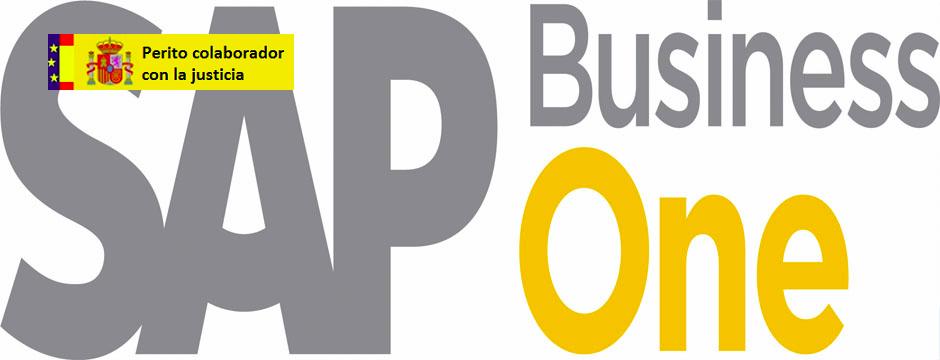 Peritaje judicial de parte ERP SAP Business One