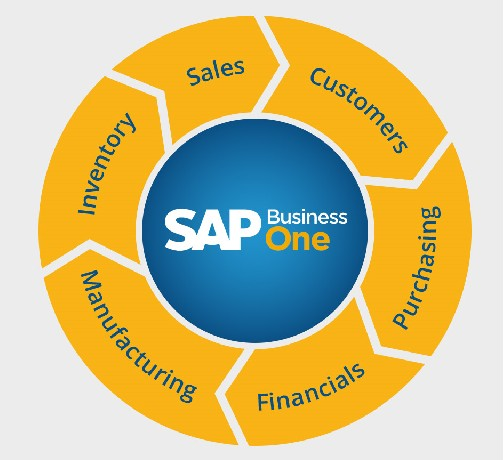 Peritaje ERP Sap Business One