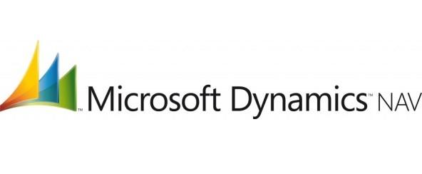 Peritaje informático Microsoft Dynamics Nav Navision